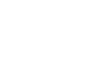 Branson Chamber of Commerce - white